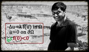 Reaction Diffusion Equations