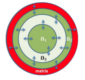 Radially symmetric model