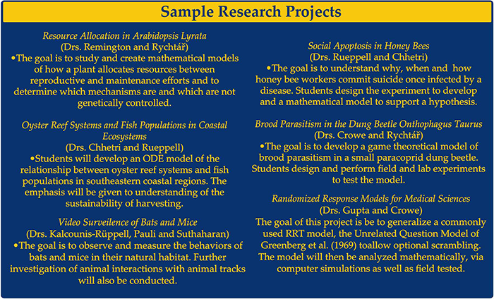 Sample Research Projects